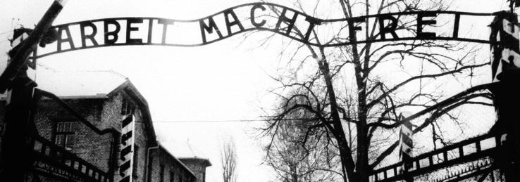 Глава МИД Польши: Освенцим освободили украинцы. Приплыли!